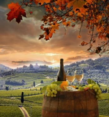 Picture of hotel near vinyard   Dreamtime photo ID 33230867 Tomas Marek